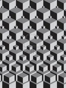 EscherIllusion